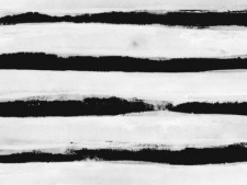 http://gpdsn.com/files/gimgs/th-20_BW Stripes by Georgiana Paraschiv_v2.jpg
