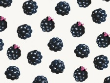 http://gpdsn.com/files/gimgs/th-20_Blackberries pattern by Georgiana Paraschiv_v2.jpg